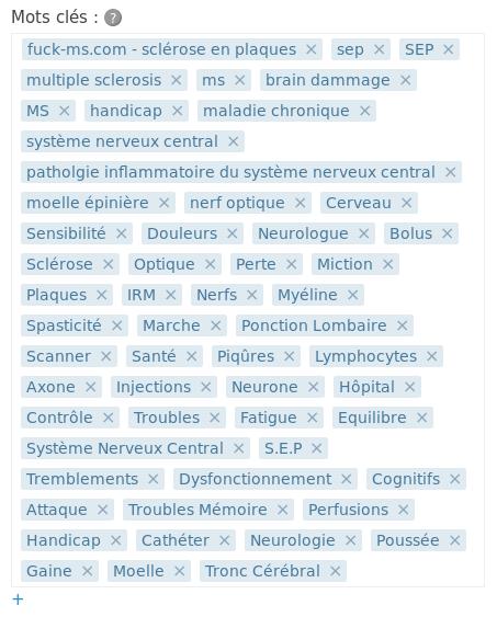 Exemple d'une grande liste de mots clés avec tagEditor